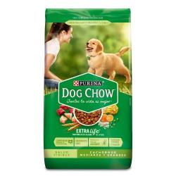 DOG CHOW - CACHORRO R. MED....