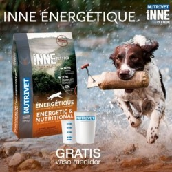 INNE - ADULTO ENERGETIQUE...